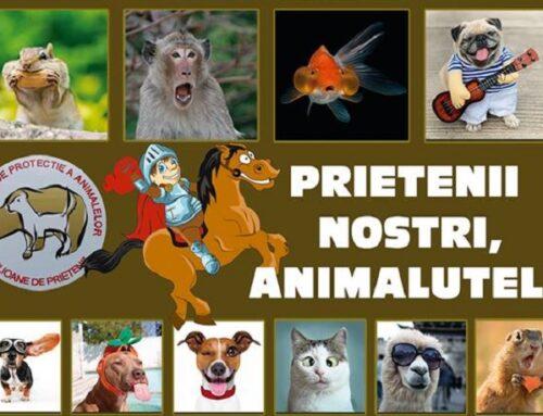 Ziua Internațională a Animalelor, marcată la Brașov