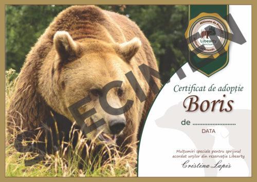 Certificat adoptie