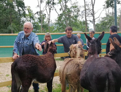 The educational farm from Libearty, inaugurated by two international celebrities