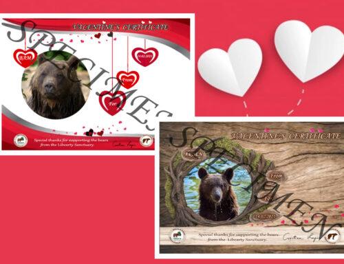 BEar my Valentine!